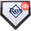 Tampa Bay Rays Home Plate